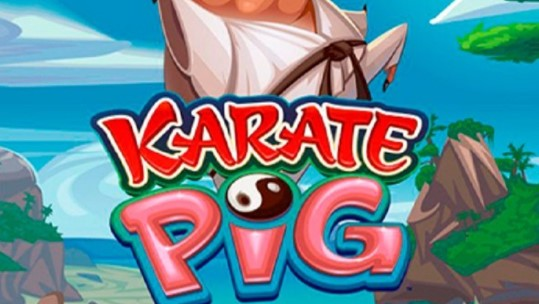 Karate Pig: For Those Who Loves Action Gaming